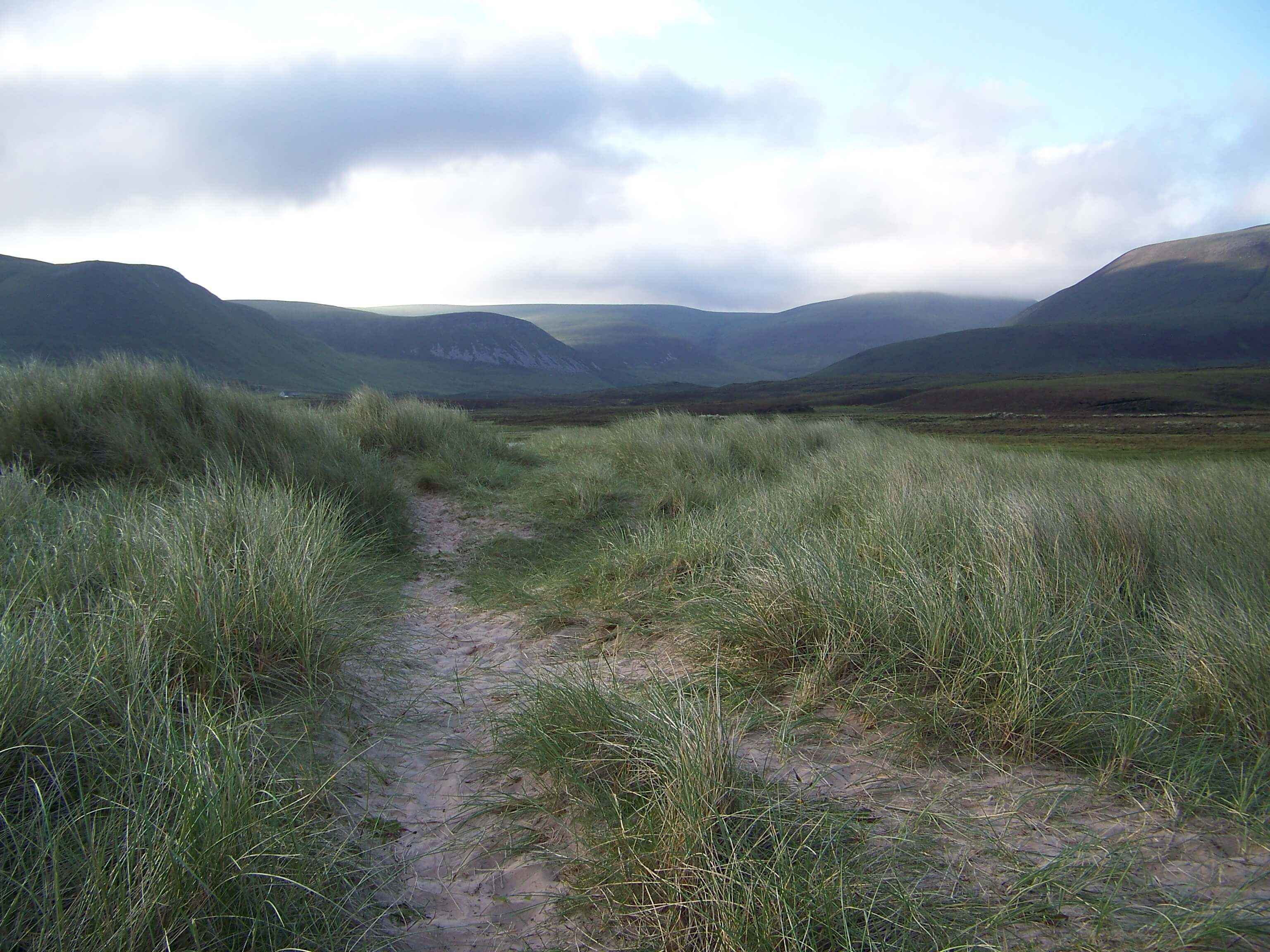 Pink sand trails through the marram grass, Hoy, Orkney