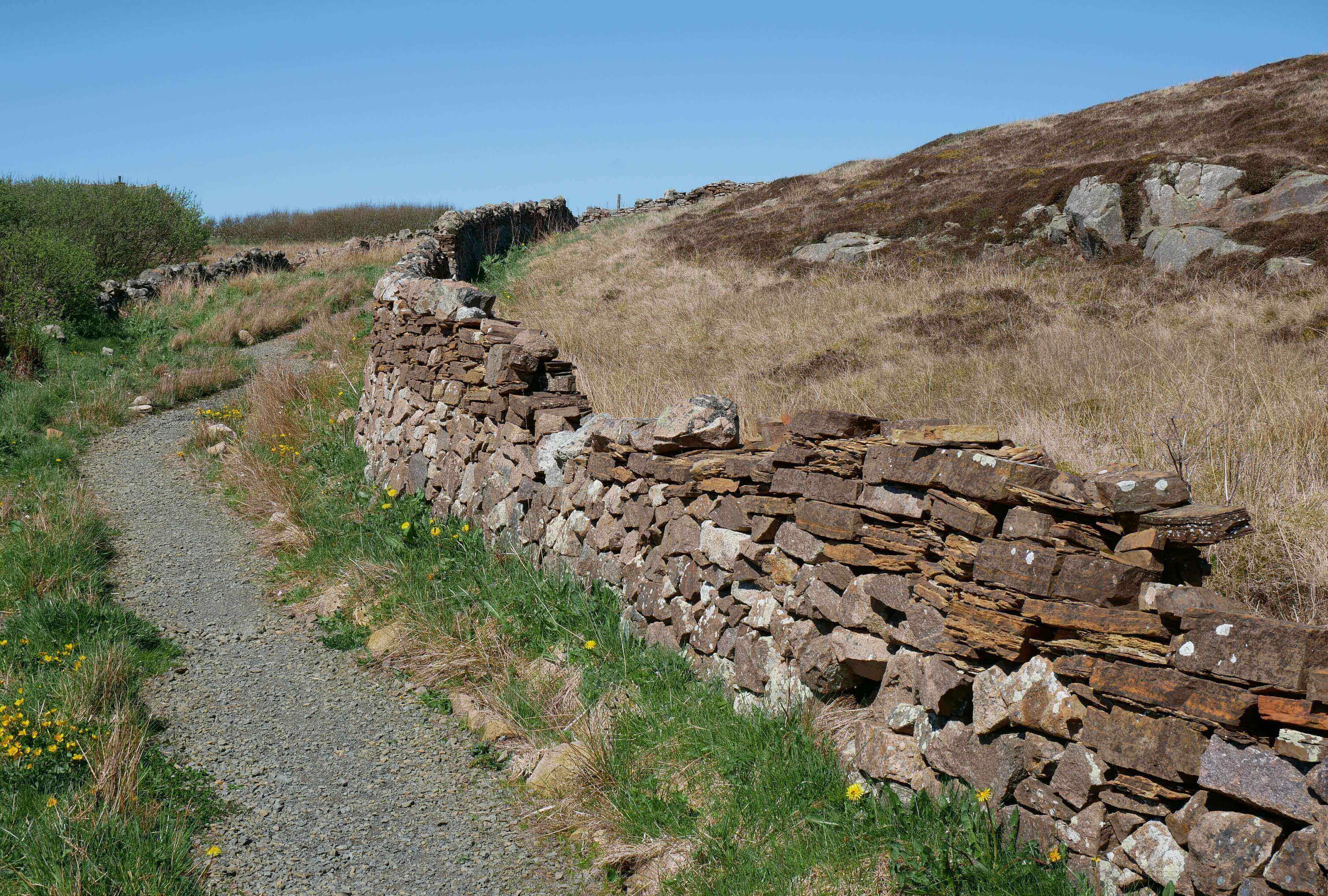 Stone dykes on the brae, built during the Napoleonic Wars - Stromness, Orkney, Scotland