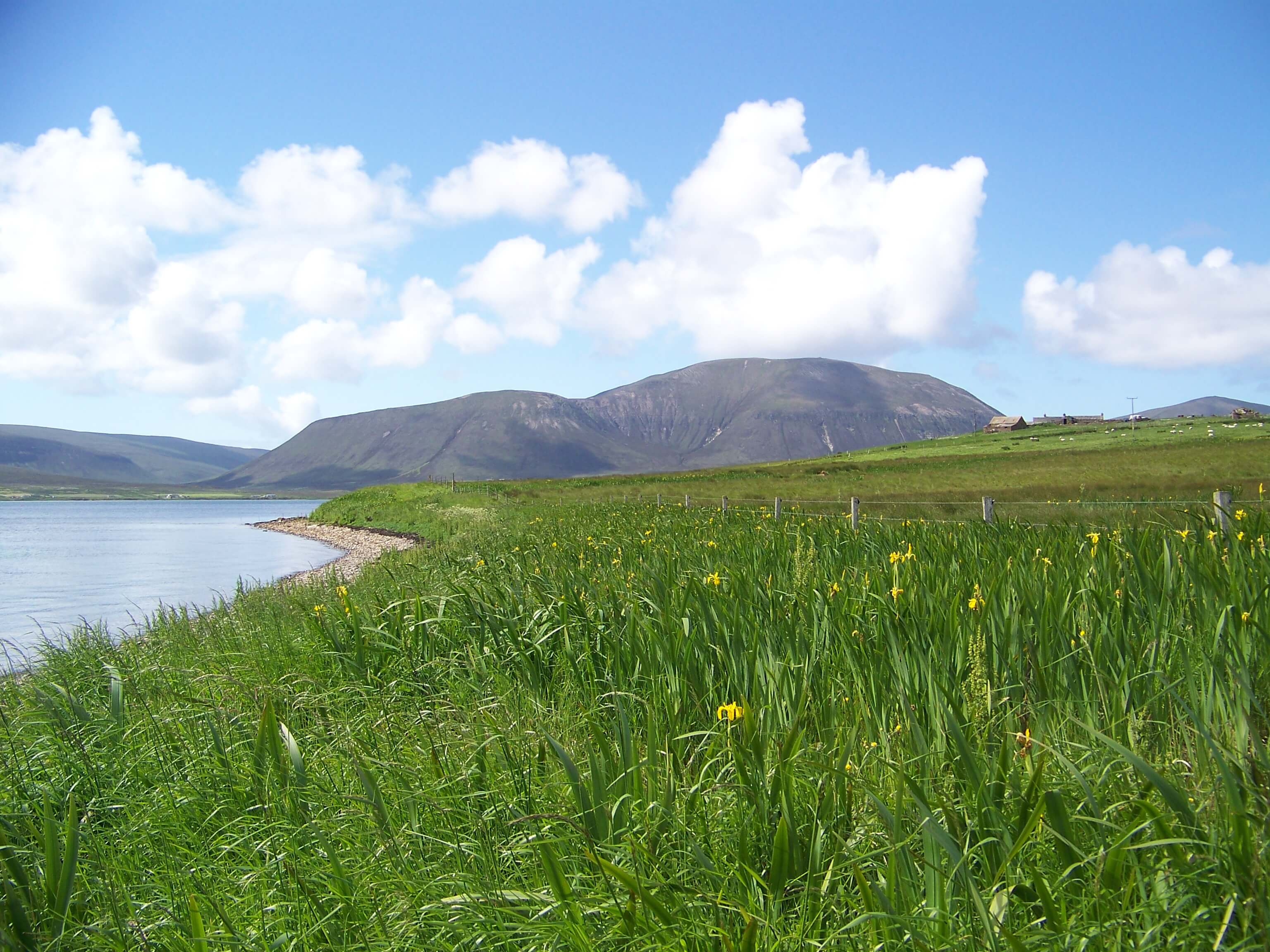 View of Hoy Hills, Orkney