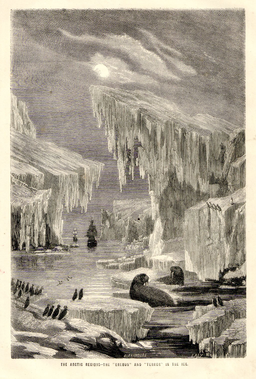 Old illustration portraying the Erebus and Terror in the Arctic