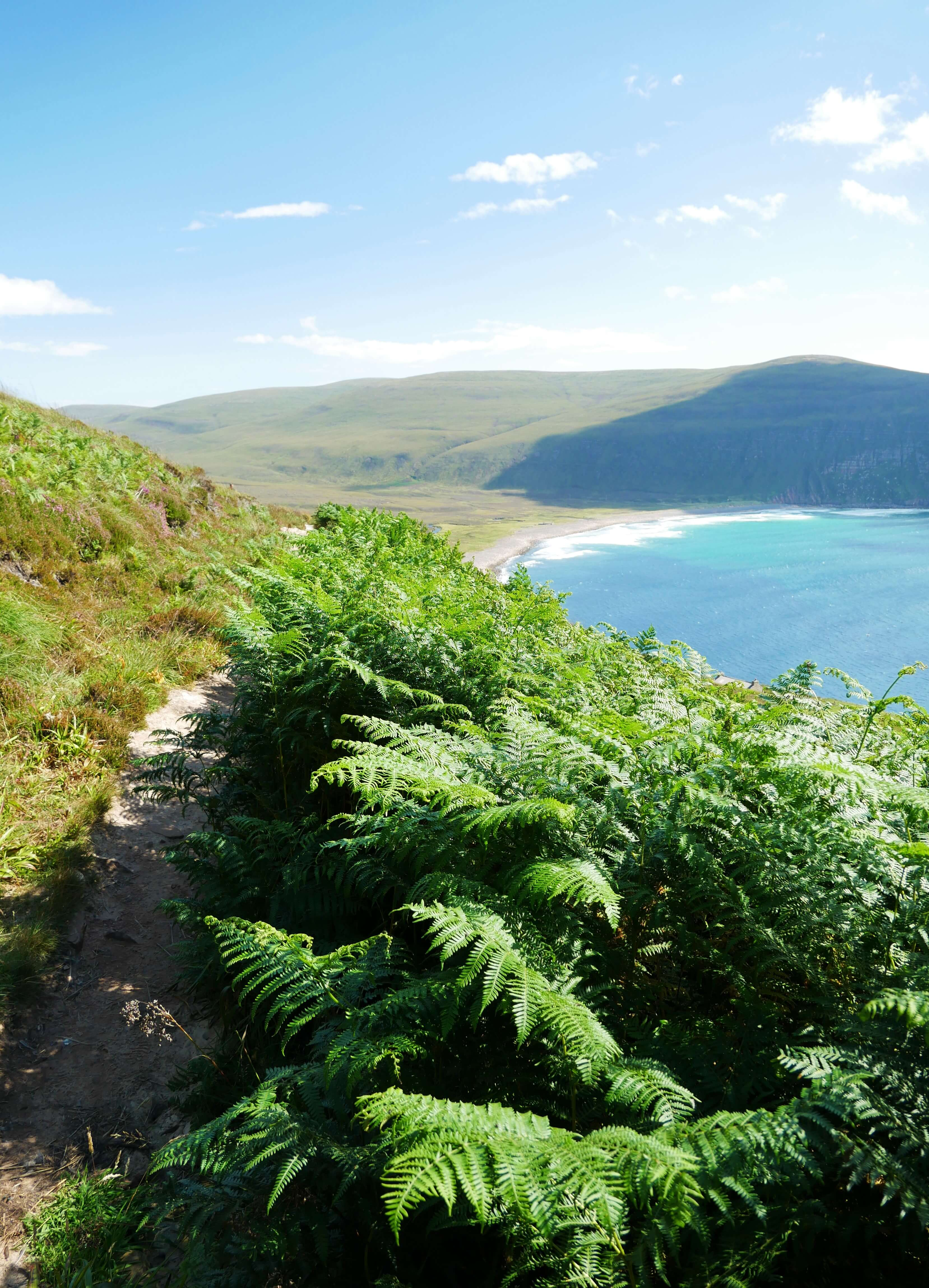 The path to the Old Man of Hoy, Orkney Islands, Scotland