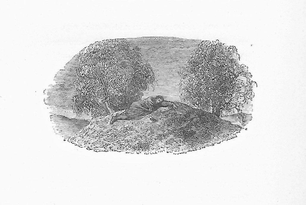 Illustration of a man asleep on a trowie mound